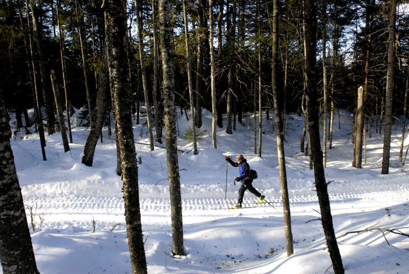 out.ski